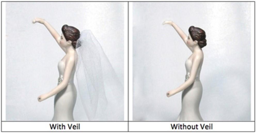 Brides Veils